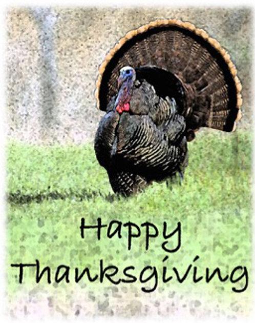 Thanksgiving Card - Happy Thanksgiving Turkey