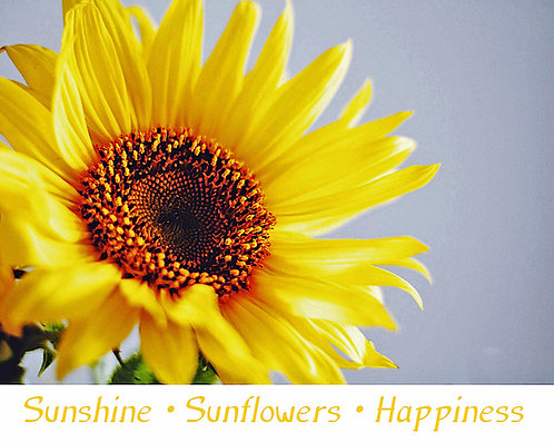 Greeting Note Art Card - Sunshine Sunflowers Happiness