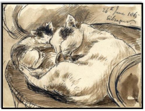 Greeting Card - Sleeping Cats