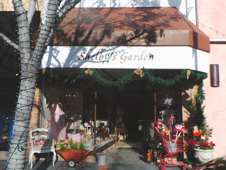 Just Write Arts is now at Shelby's Garden in San Carlos