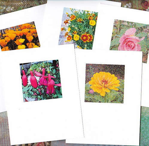 Boxed Set of 5 Note Cards of Garden Flowers Original Photos