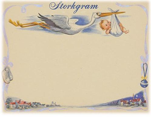 Greeting Card - Storkgram Boy