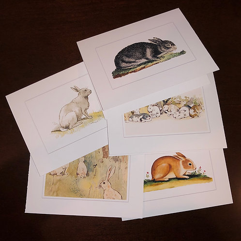 Colorful Bunny Rabbit Vintage Drawings Note Cards Greeting Cards Boxed Set of 5