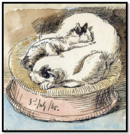 Greeting Card - Sleeping Cats in a Basket