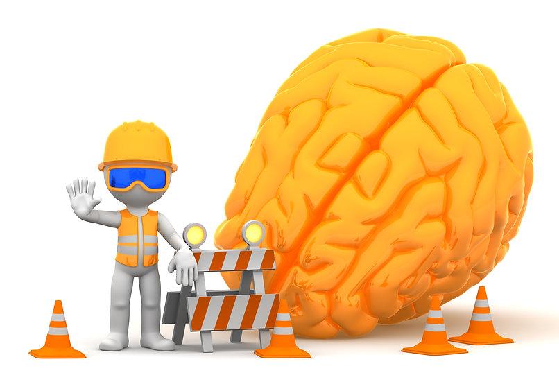 Curso Neuroanatomía Descriptiva del Encéfalo Online
