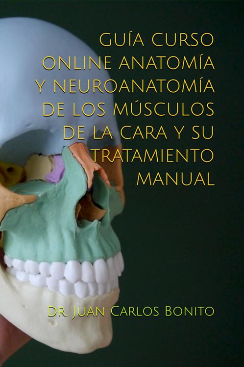 GUÍA CURSO ONLINE ANATOMÍA Y NEUROANATOMÍA MÚSCULOS DE LA CARA