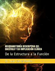 Guía Curso Neuroanatomía Descriptiva Encéfalo