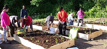 Picture of our Bhutanese neighbors working the garden plots at the church.