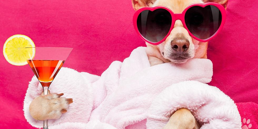 Dog Show & Costume Contest