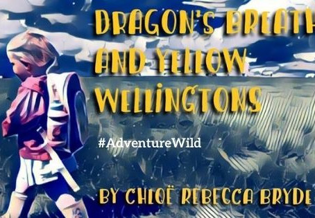Dragon's Breath and Yellow Wellingtons - Book Review