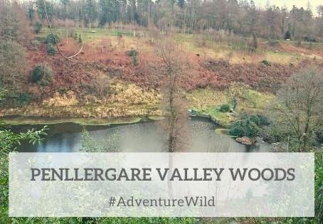 Penllergare Valley Woods