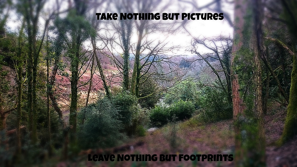 Wild Camping - Take Nothing But Pictures, Leave Nothing But Footprints. Adventure Accessories