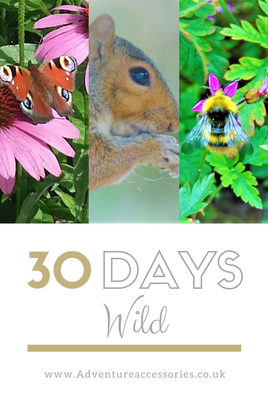 30 Days Wild Pin by Adventure Accessories