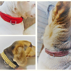 Paracord Dog Collars - S/M/L with Metal D-Ring
