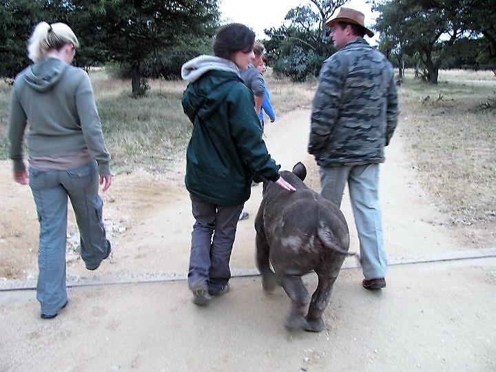 Della the Rhino, Adventure Accessories