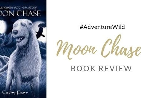 Moon Chase - Book Review