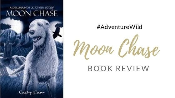 Moon Chase Book Review by Adventure Accessories