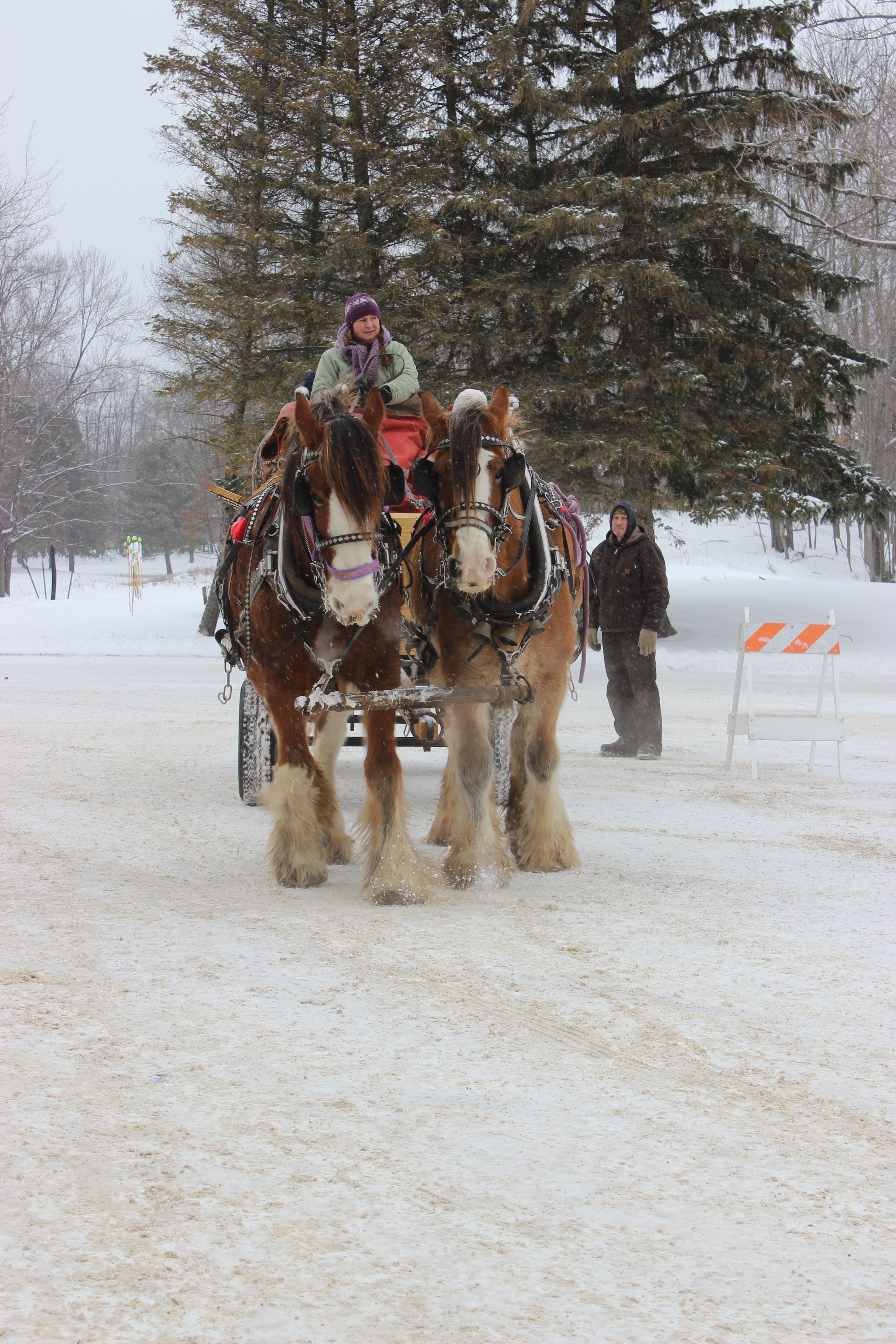 2018 Winter Carnival (157)