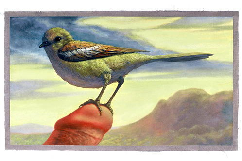 The Bird  print