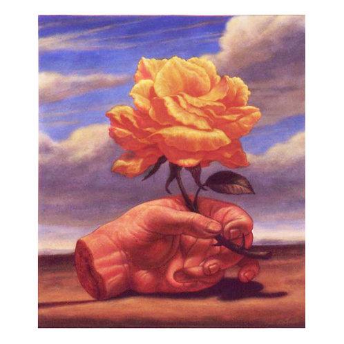 Ambiguous Rose  print
