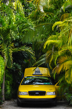 Key-West-Taxi-no-logo
