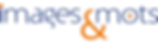 nveau-logo-hori.png