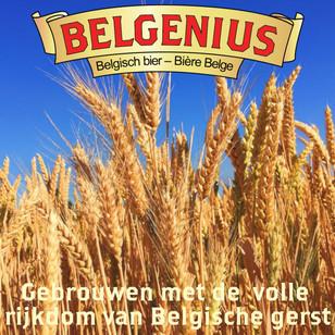 Belgische gerst.jpg