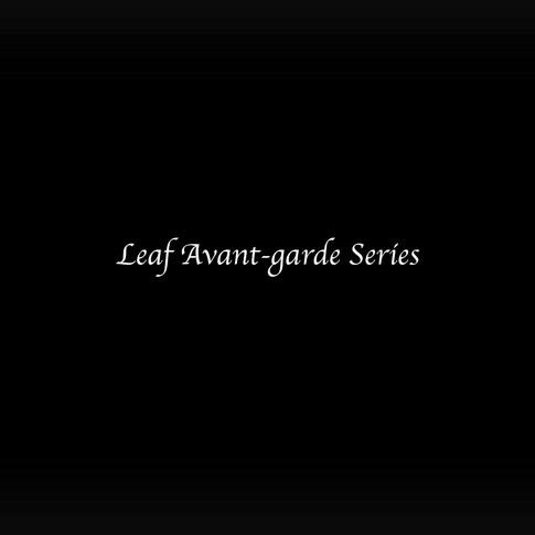 Leaf Avant-garde Series