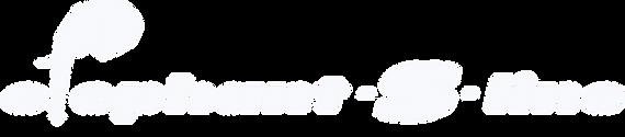 Aufkleber S Line für Serienfahrzeug SAP