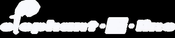 Aufkleber E Line für Serienfahrzeug SAP