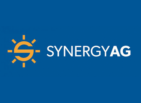 Consultant Feature: Niki Beingessner - Synergy AG