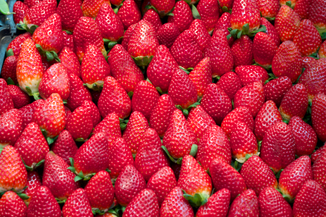 FRESAS: Beneficios