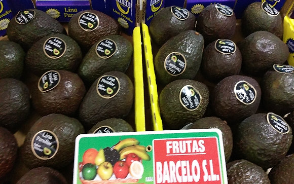 Aguacates Hass Extra
