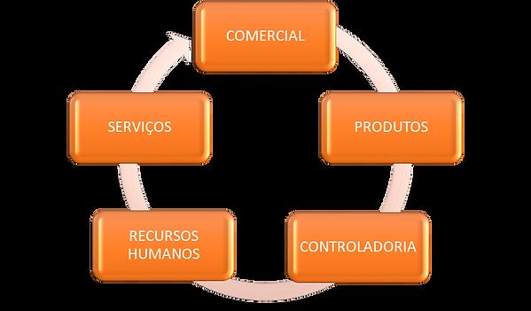 Estrutura organizacional.png