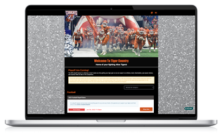 Live Example Sports Home Page