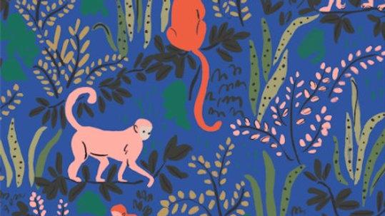 Monkeys Blue