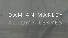 Damian Marley Autumn Leaves aerials dron
