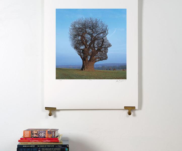 Tree Of Half Life silkscreen edition of 295