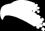 Logo-cabeza-blancox-Altai.png