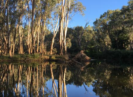 River Rambling