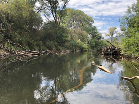 Ovens River, Stage 8