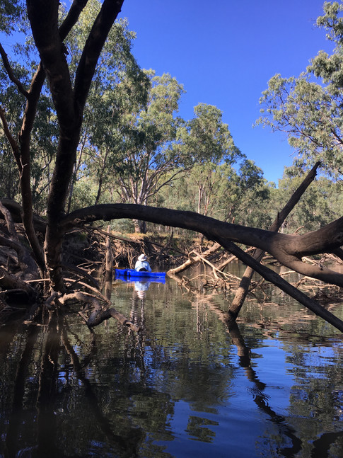 Darby fishing, Ovens River