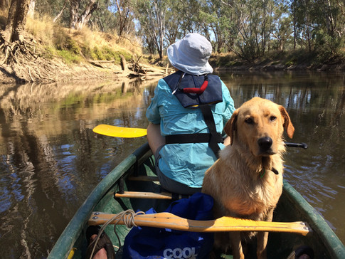Jane and Finney, lower Ovens River (pre NP)