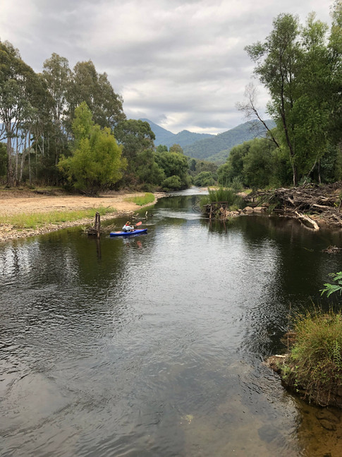 Ovens River with Buffalo Plateau behind, Stage 12
