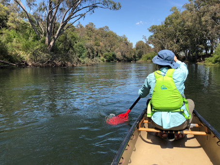 Goulburn River Trial Paddle, Thornton, Victoria