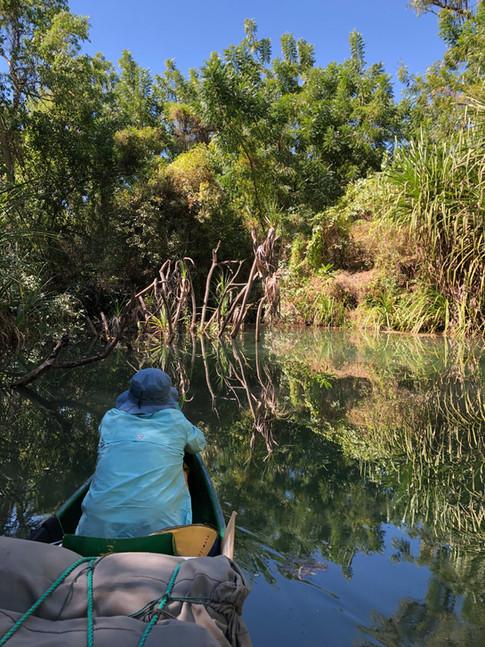 Creek off the Ord River, the Kimberley, WA