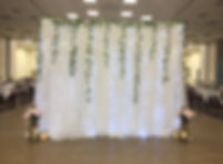 Jcraftyourevents_Fairy Lights Backdrop (