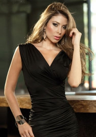 Sexy European V Neck Black Polyester Dress