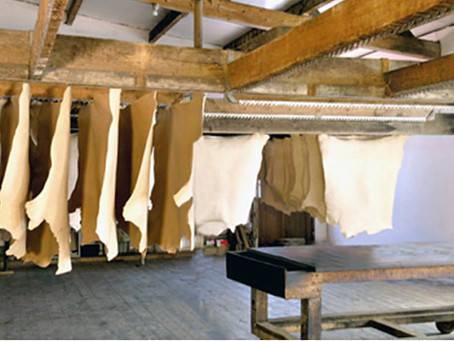 C16th/17th: We'll tan your hide