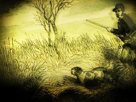 1873: Frightful Gun Accident at Cuckfield